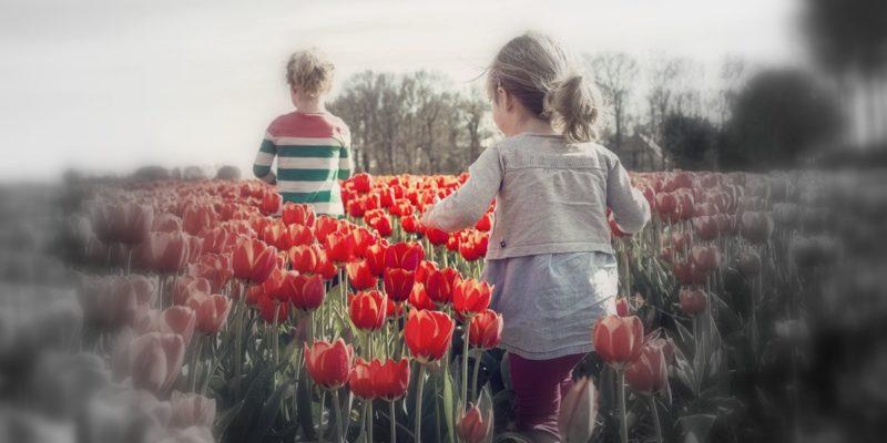 Frühling - raus damit