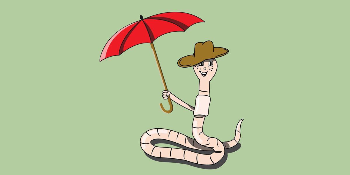 Regenwurm Orakel